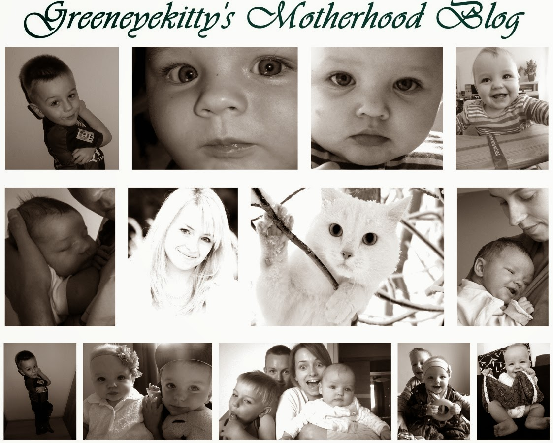 Greeneyekitty's Motherhood Blog
