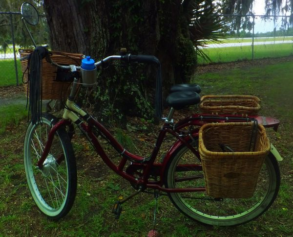 schwinn bicycle converted to electric assist, basket painers, leather motorcycle grips