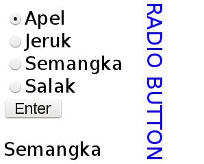 input radio button