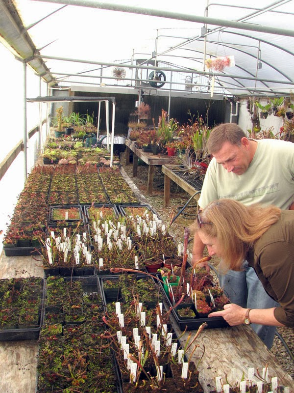 Mesa Exotics greenhouse with Don Elkins the proprietor and Leslie Harris