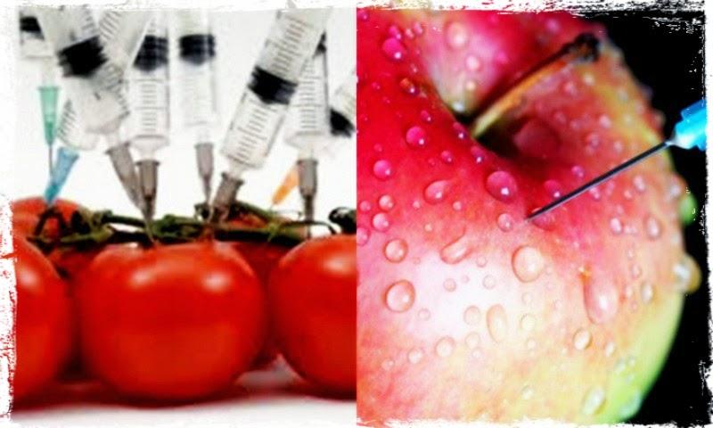 Η επίσημη λίστα μεταλλαγμένων τροφίμων στην Ελλάδα από την Greenpeace