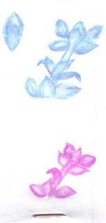 Flor de Maio (desenho)