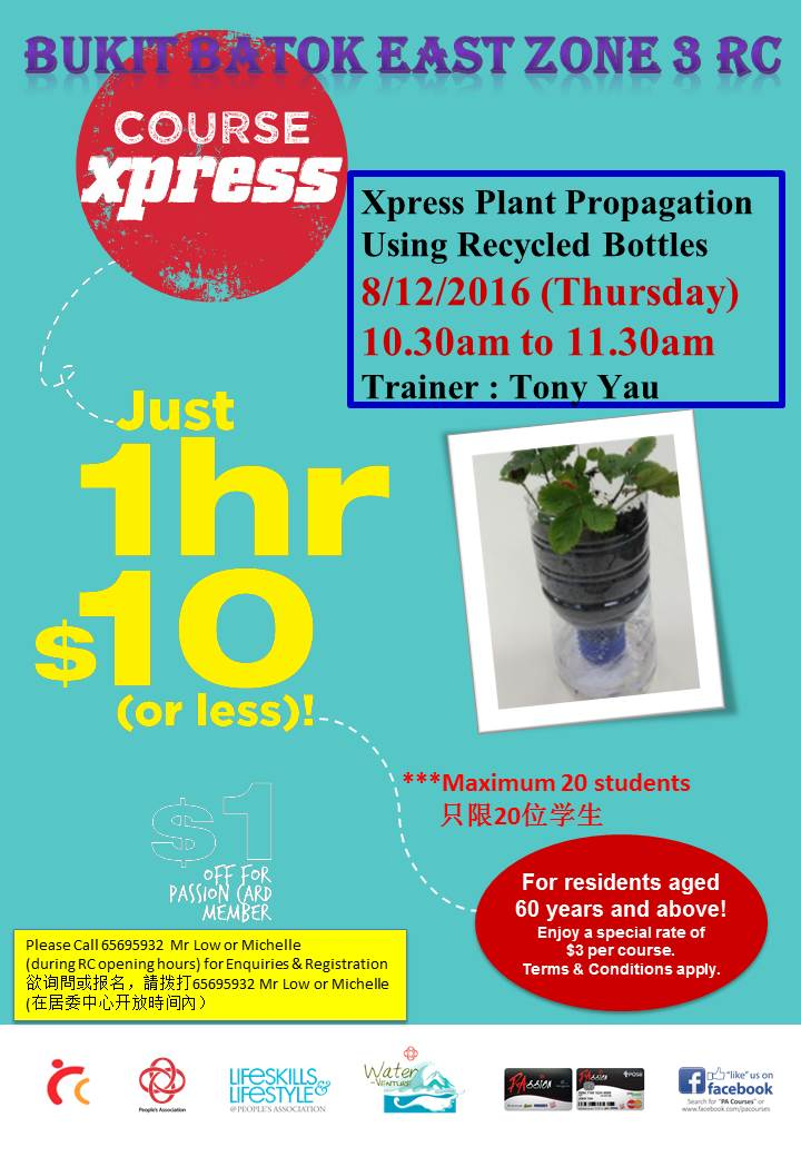 Xpress Plant Propagation Using Recycled Bottles