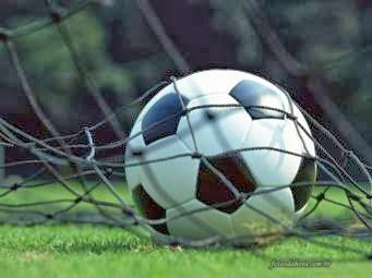 Ini Dia Produk Indonesia Yang Dipakai Di Liga Inggris Dan Piala Dunia !