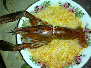 LOBSTER AIR TAWAR (LAT)