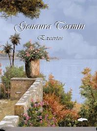 <br><br> E-book