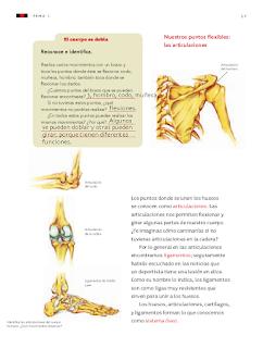 Respuestas Apoyo Primaria Ciencias Naturales 3er grado Bloque I Tema 1 Movimientos del cuerpo y prevención de lesiones