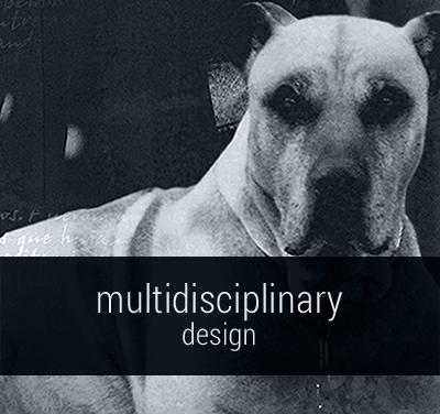 Somerset_Harris_Multidisciplinary_Design
