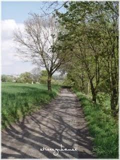 Komm mit auf meinem Weg durch die Natur