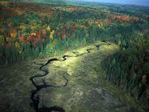 Algonquin Park Ontario Canada