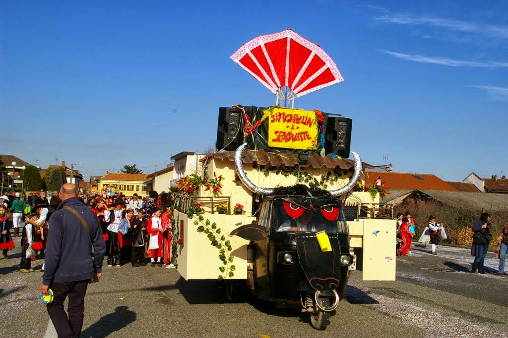 Foto Carnevale 2014 a Tronzano