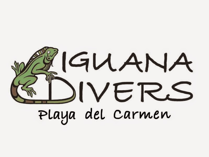 Iguana Divers