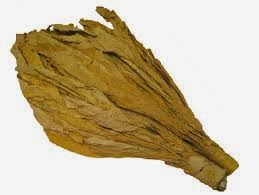 BARGAIN! Tobacco Leaves  £1.50 for 50g