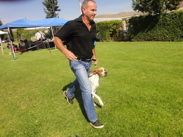 2 Διεθνείς Εκθέσεις σκύλων CACIB πραγματοποιήθηκαν στις 13 & 14 /10/2012 από τον ΚΟΕ