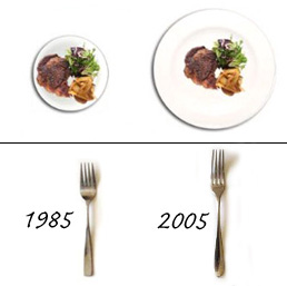 Portion Distortion And The Small Plate Movement  sc 1 st  Not Buying Anything - Blogger & Not Buying Anything: Portion Distortion And The Small Plate Movement