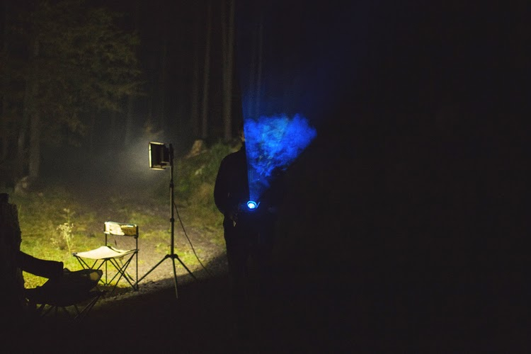 projections in the forest bioluminescent forest