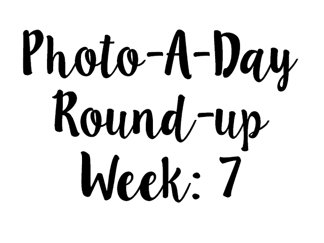 White background with white text reading Photo-A-Day Round-Up Week: 7
