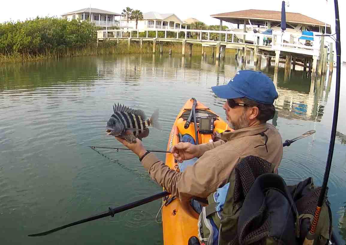 Kayak angling for big fish ponce inlet fishing report for Ponce inlet fishing