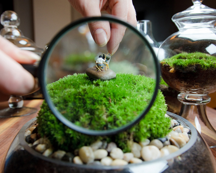 Trackfindings gardening terrariums for Self sustaining garden with fish