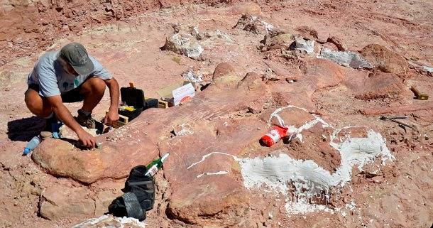 Pesquisadores descobriram o maior dinossauro já visto