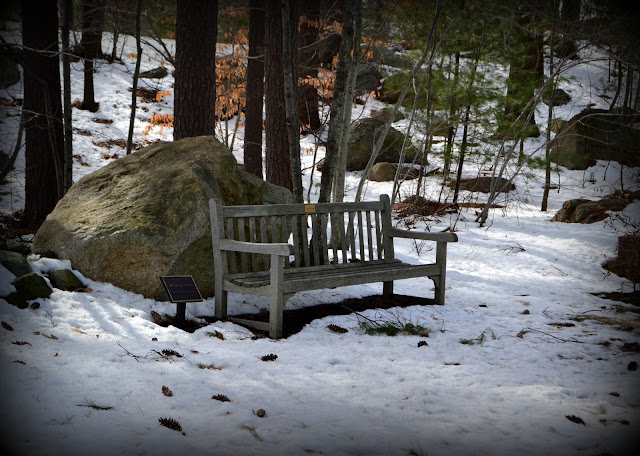 Cold, Seat, Lynn Union Hospital, Lynn, Massachusetts, snow, bench