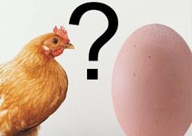 Mana Yang Lebih Dulu Ayam Atau Telur