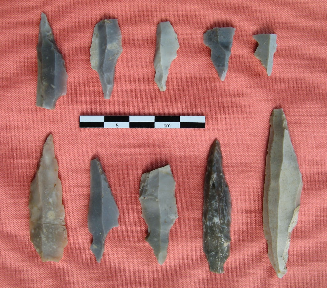 Earliest evidence of human presence in Scotland found