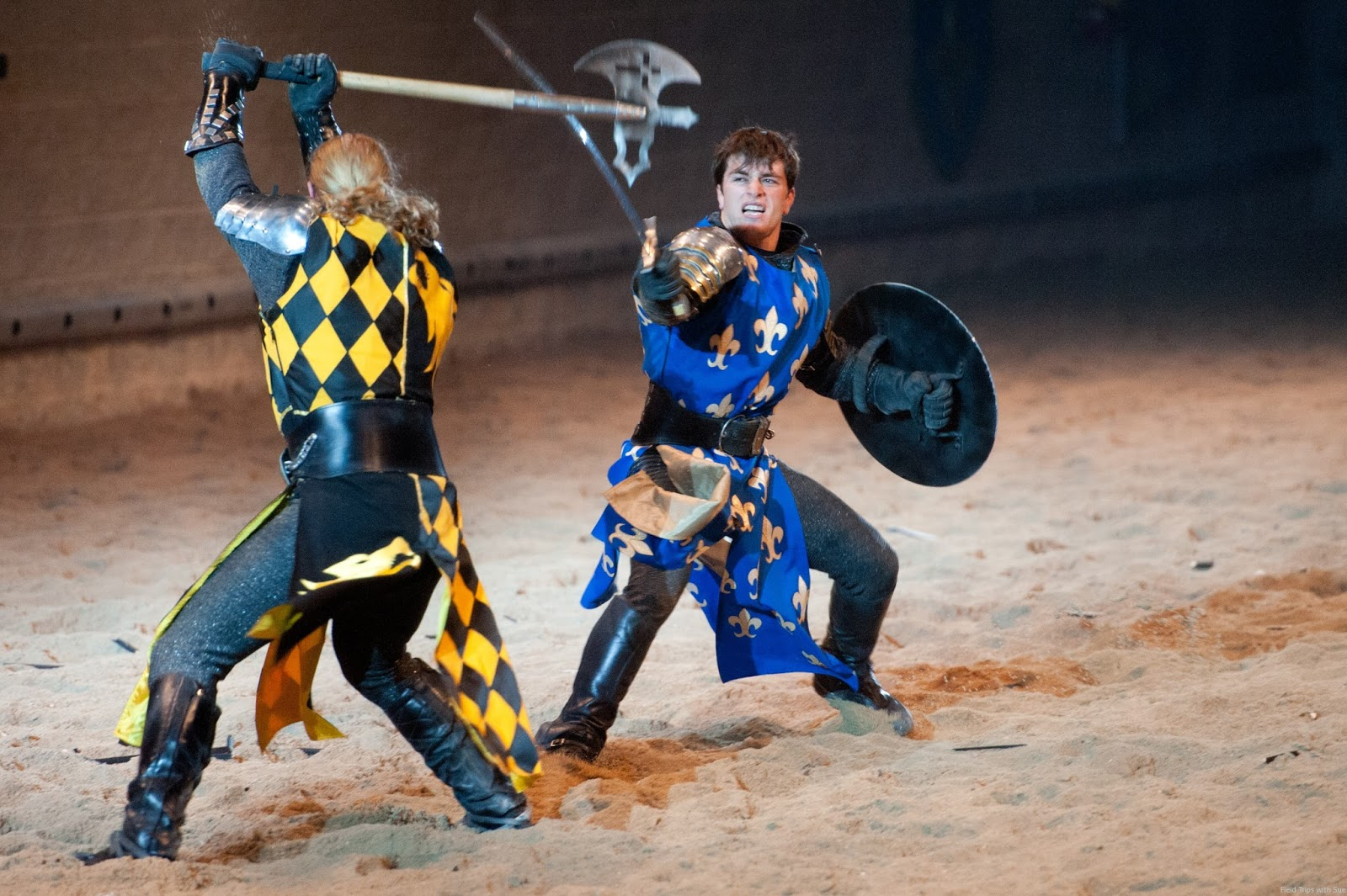 Eason Kamander's blog: Camp 78 Trip to Medieval Times
