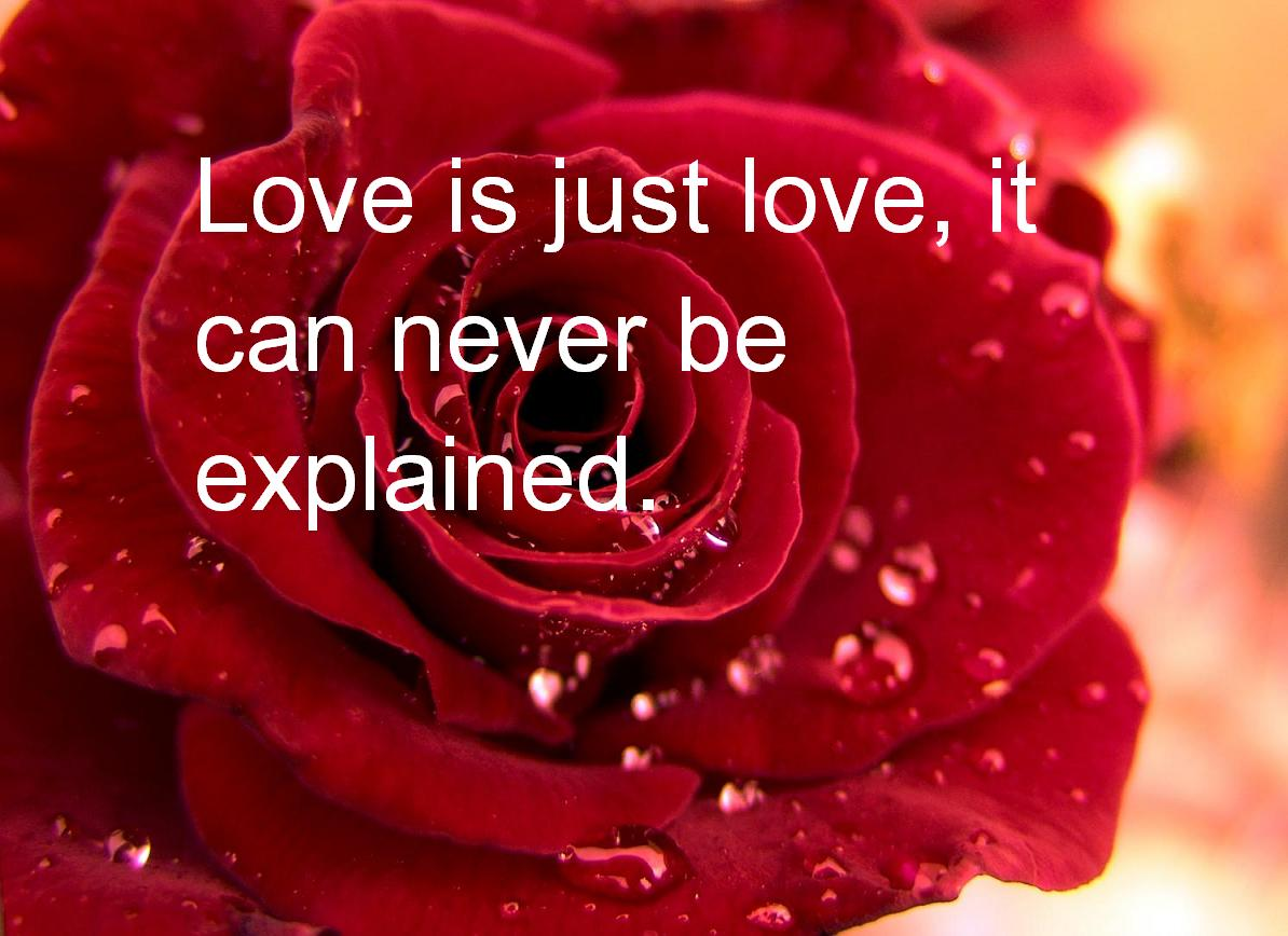 I Love You Quotes Valentines Day : love Is Just Love