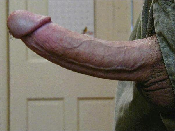 фото самый большой половой член в мире