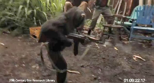 This Is What Happens When You Give A Gun To A Monkey