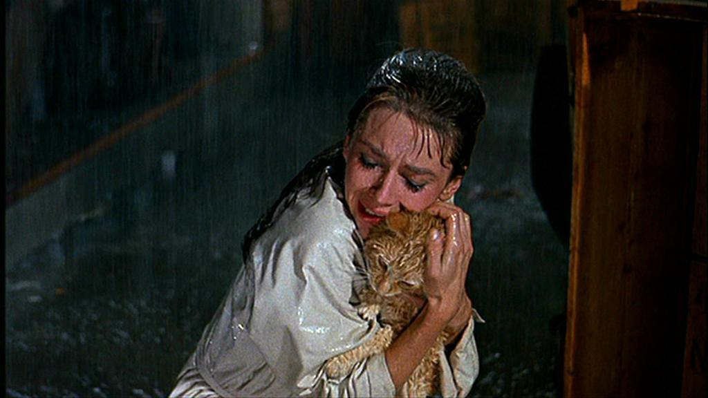 cat in the rain characters Cat in the rain by ernest hemingway: summary the short story cat in the rain was written by ernest hemingway in the 1920 s it is about an american couple that spends their holidays in an italian hotel.