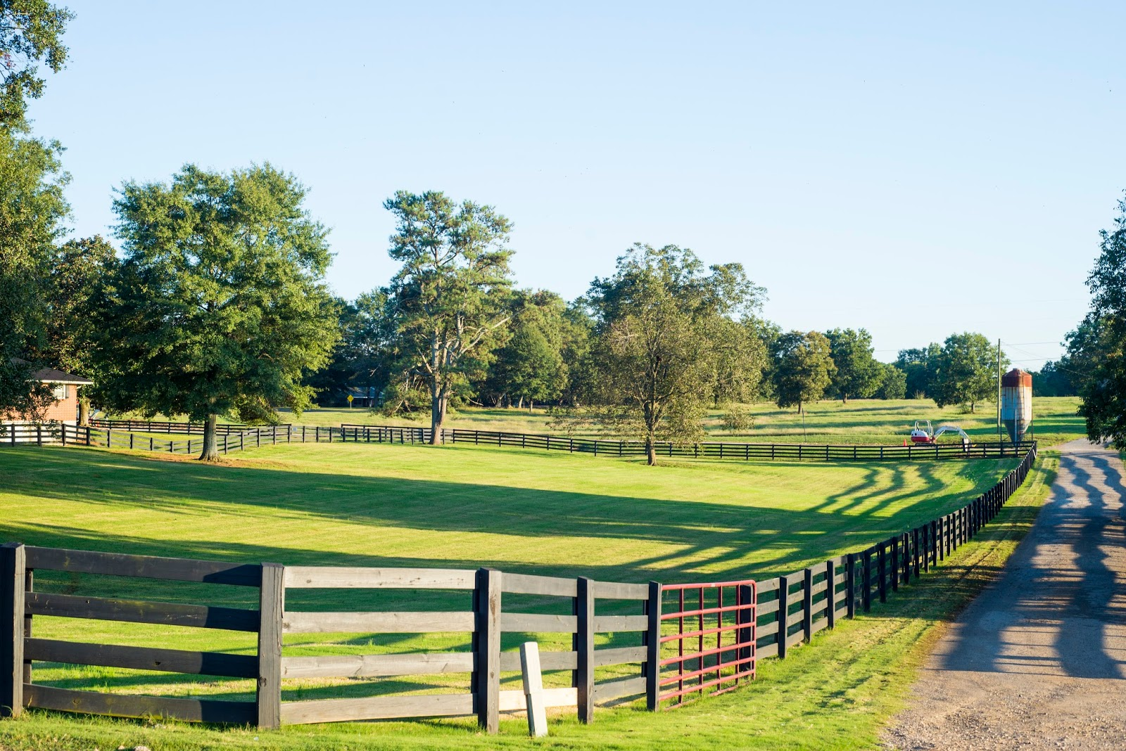 What to do for Fall: Southern Belle Farm visit