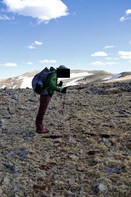 trekking poles bad posture