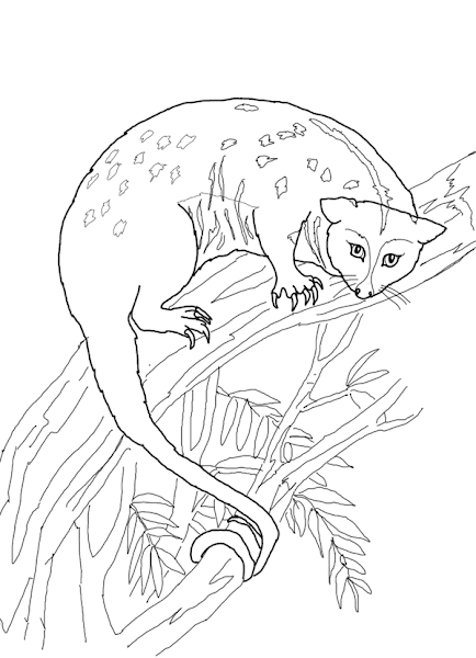 Baby Animals Coloring Pages Adult