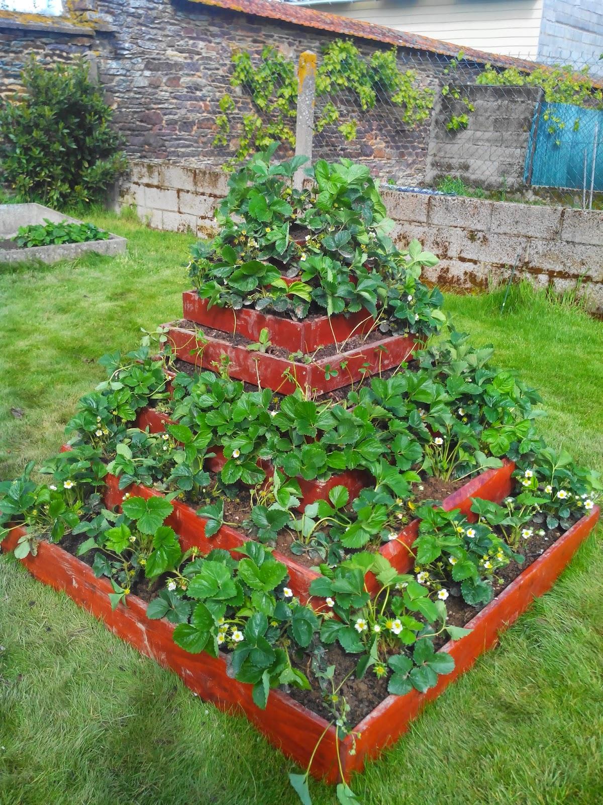 Breuillet nature des potagers qui font r ver album for Agencement de jardin potager