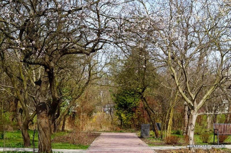 Warszawa Ursynów Kopa Cywila parki warszawskie zieleń ogródki działkowe