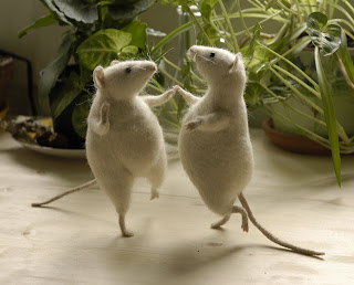 Funny Animals Dancing