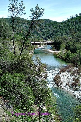 Yuba River covered bridge dogwoodlanerambles.blogspot.com