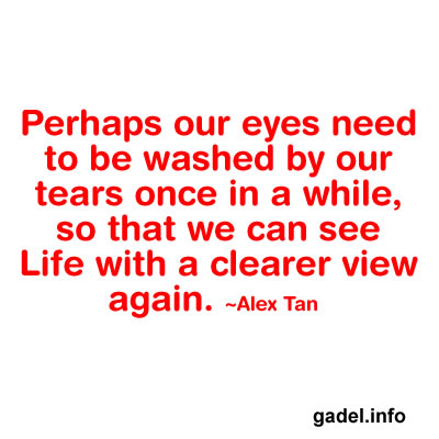 Perhaps our eyes need to be washed by our tears once in a while  so    Quotes About Overcoming Hard Times