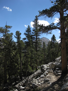 View to the south, Tyee Lakes Trail, Inyo National Forest, California