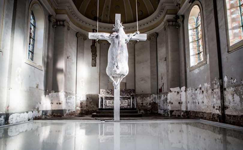 ΒΕΛΓΙΟ: «Σταυρωμένη αγελάδα» στο κέντρο καθολικής εκκλησίας