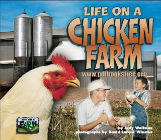 Life in a Chicken Farm By Judy Wolfman Pdf Free Download