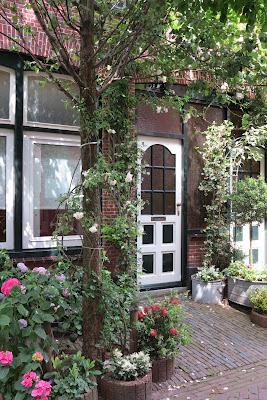 container garden, urban garden, pink, hydrangea, Haafner