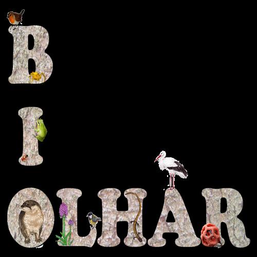 Biolhar