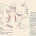 Deteksi Dini Kanker Getah Bening pada Anak