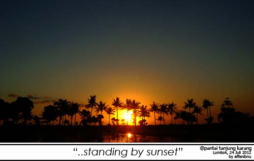 Siluet Pohon Kelapa Sunset Di Lombok