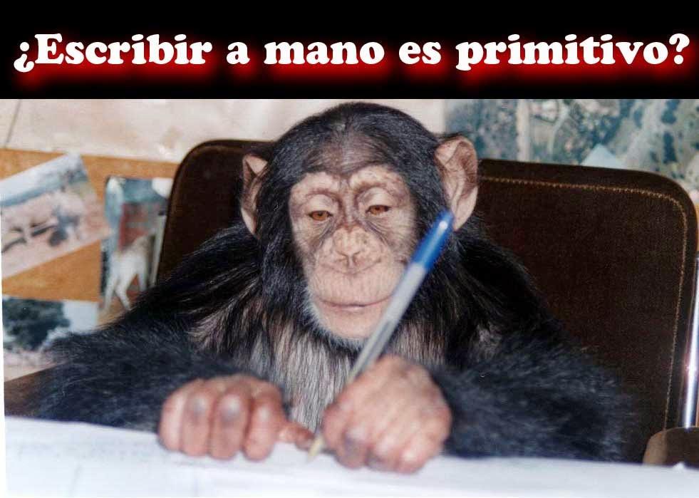escribiendo, mono, primitivo,