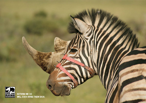 Nothing+We+will+Ever+Bring+Them+Back+Save+The+Rhino3 Creating Creative Wild Life Awareness: Animals In Advertisements