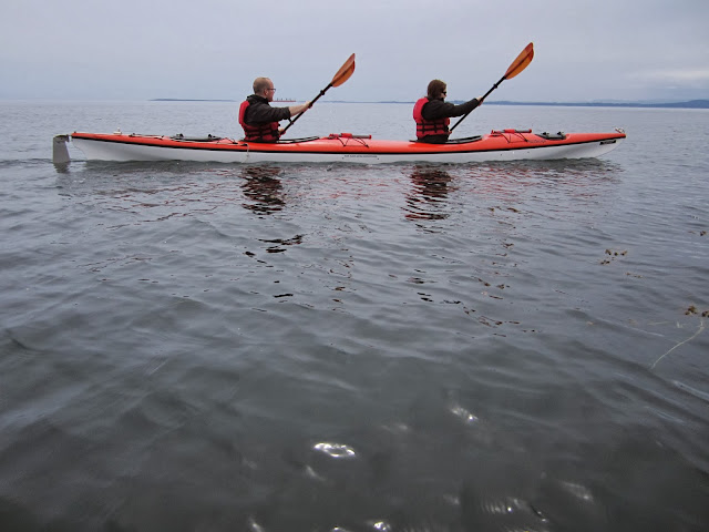couple kayaking san juan orcas